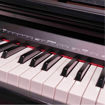 Picture of Piano Digital Oqan QP88C